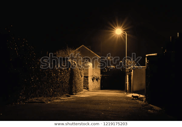 sodium street light illuminating the road and house at night
